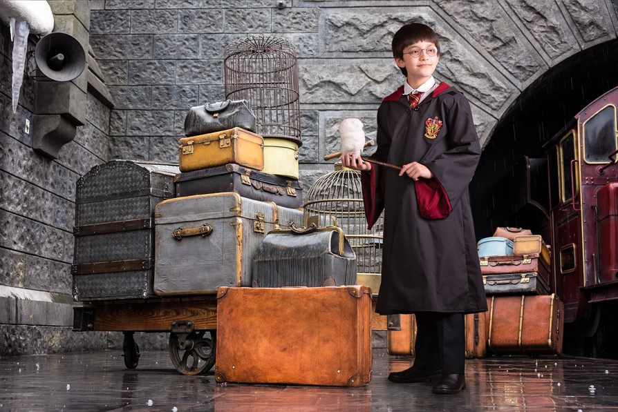 Harry Potter on Platform 9 3/4 with Hedwig