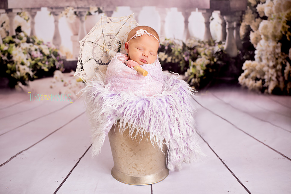 Southern Belle Newborn Themed Picture