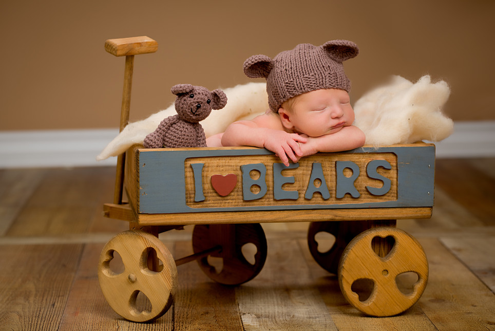 Baby boy in a bear cart newborn picture