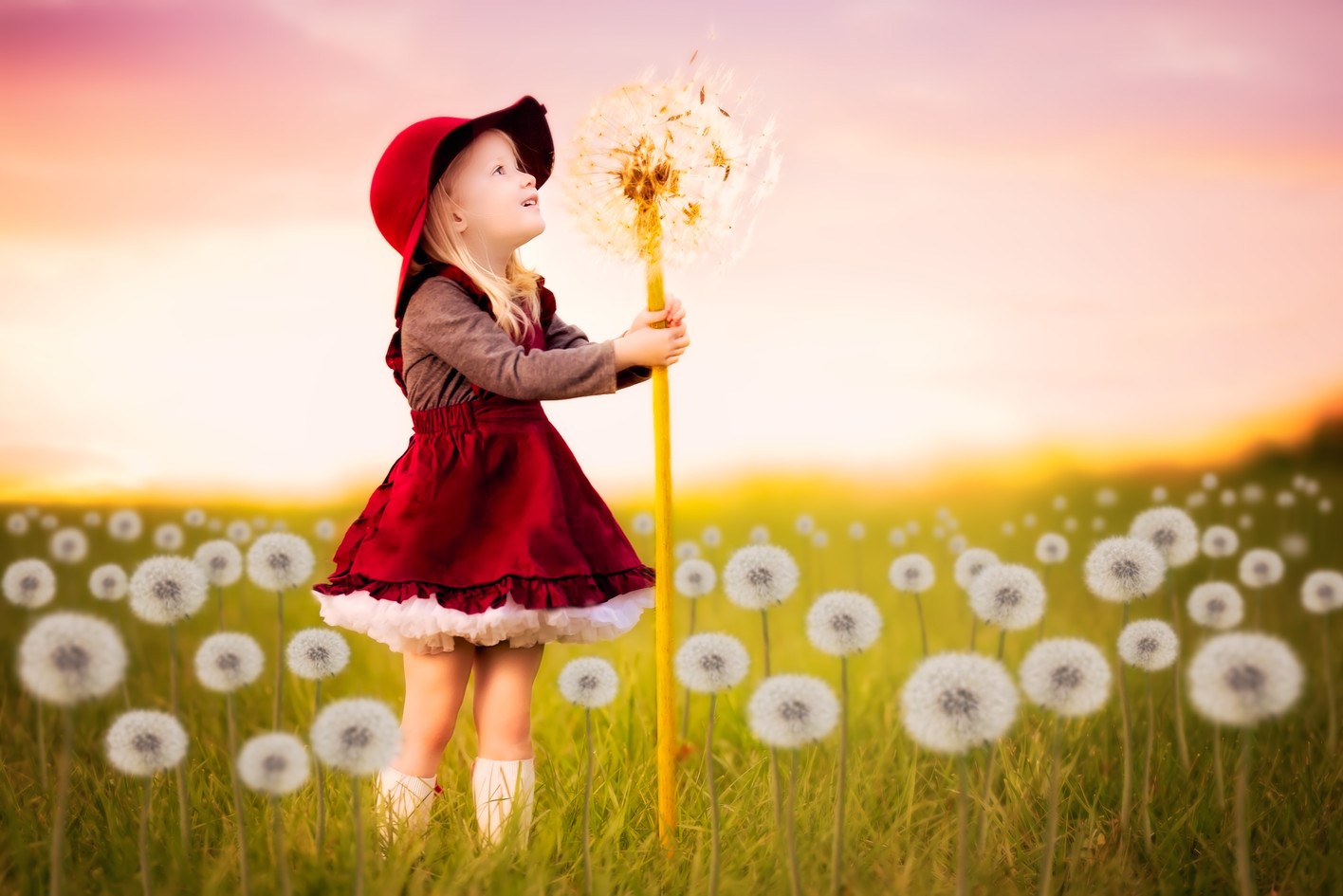 Whimsical fairytale children's dandilion picture