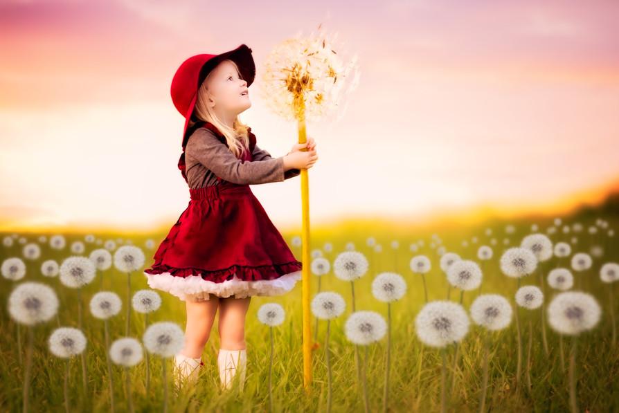 Whimsical fairytale children's dandilion picture