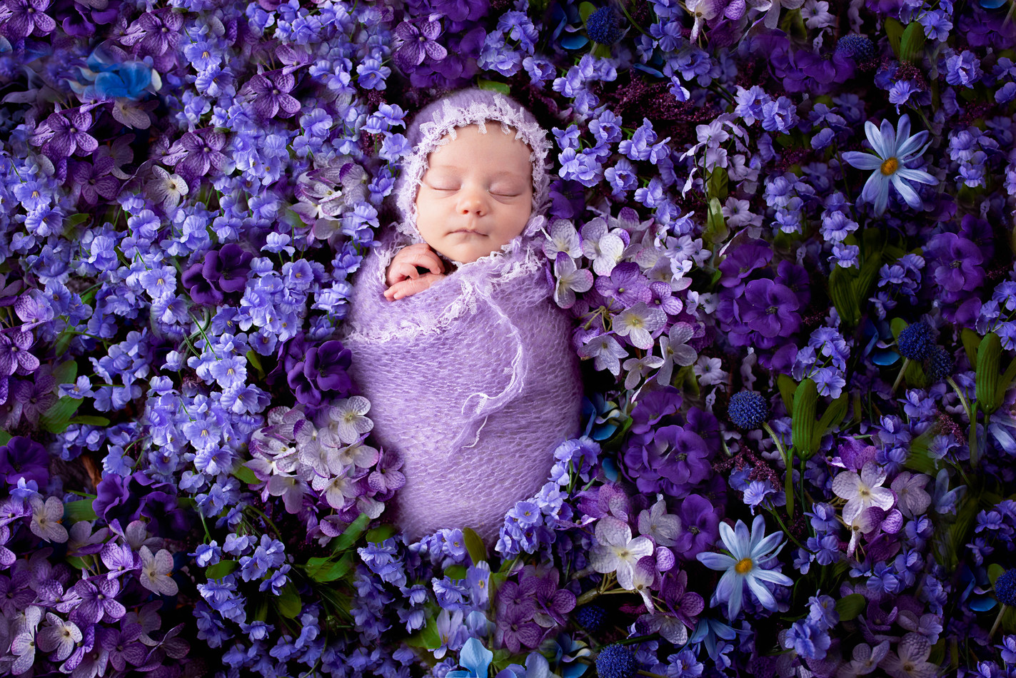 Newborn in a field of flowers