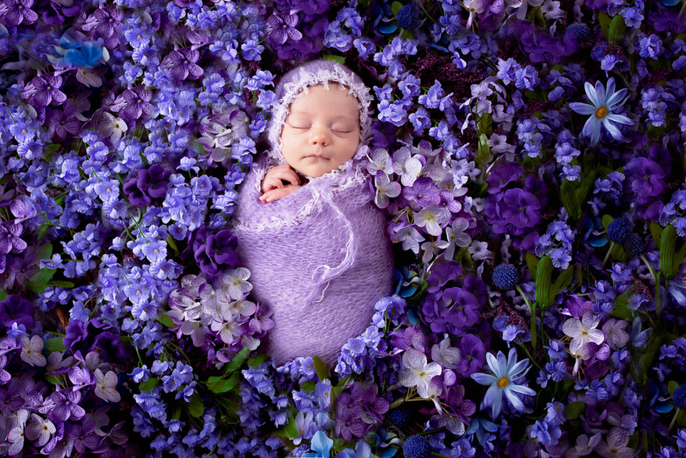 Newborn in a field of flowers