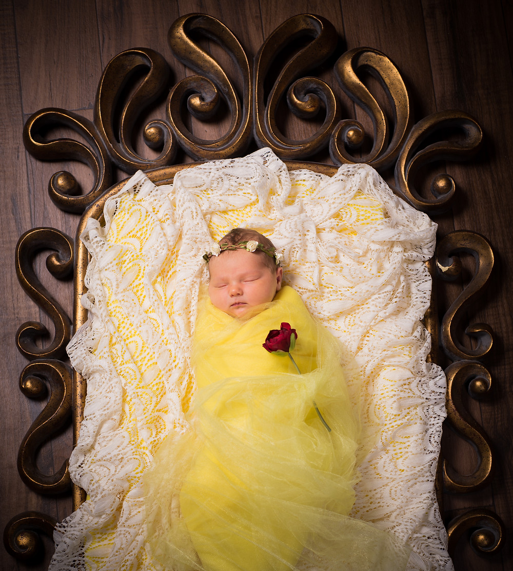 Beauty and the Beast Newborn Phot