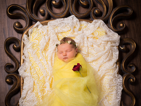 A Little Princess and her Pea Newborn Photoshoot