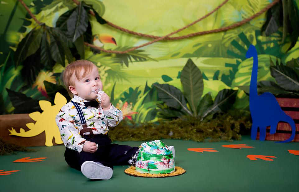 Dinosaur Cake Smash in the jungle