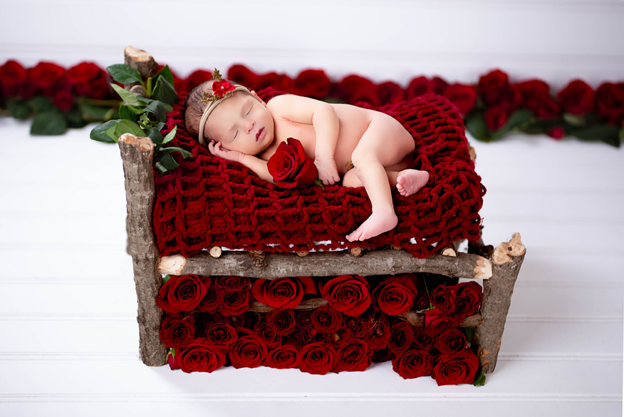 Sleeping Beauty Newborn Photography with Real Roses