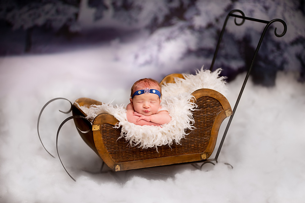 Newborn photography with a fur lined sled in the deep snow