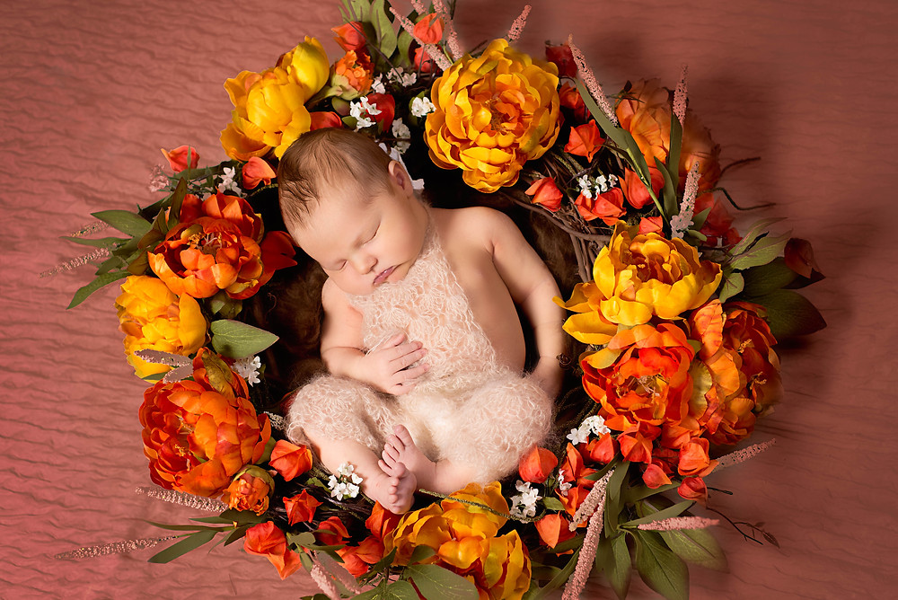 Newborn photography with curled up baby