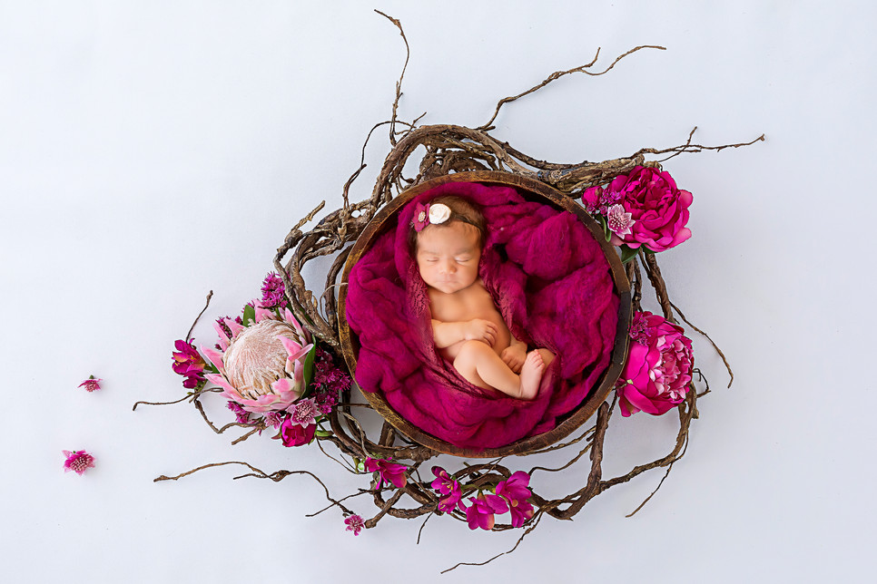 Newborn baby in magenta bowl with flower