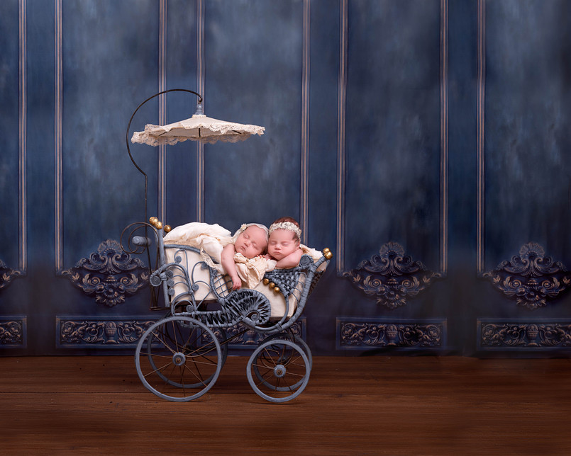 Twin Newborn Photography in Antique Stroller