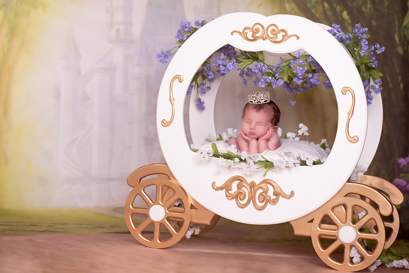 Princess Newborn picture with carriage
