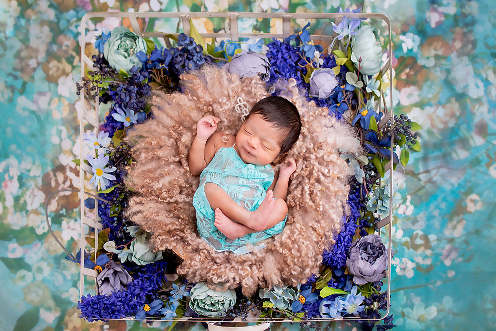 Overland Park newborn photography with flowers and hoby lobby props
