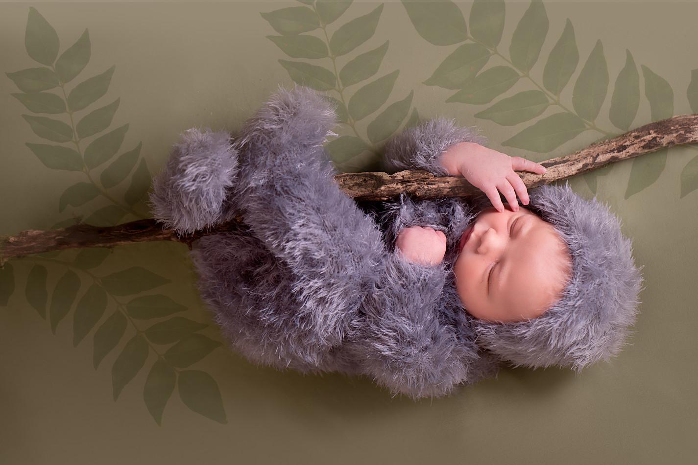 Sloth Newborn Photography