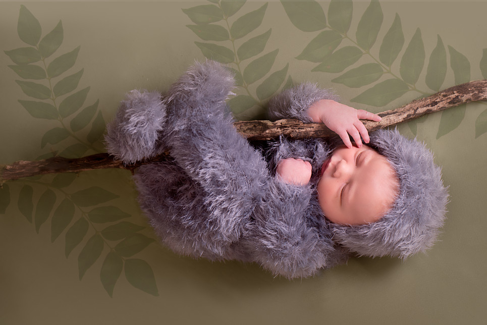 Sloth Newborn Photography