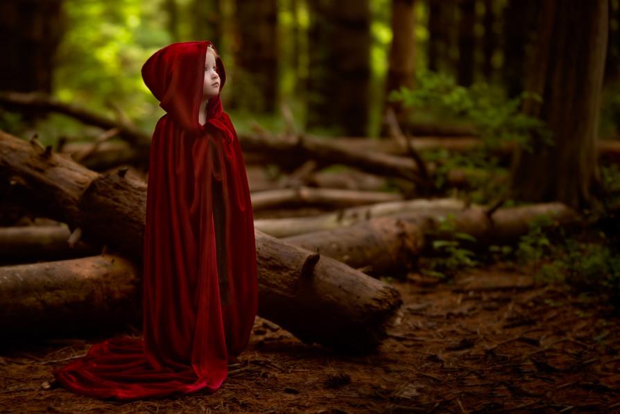 Fantasy surreal children's forrest photography