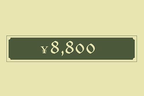 アレンジ 8,800円
