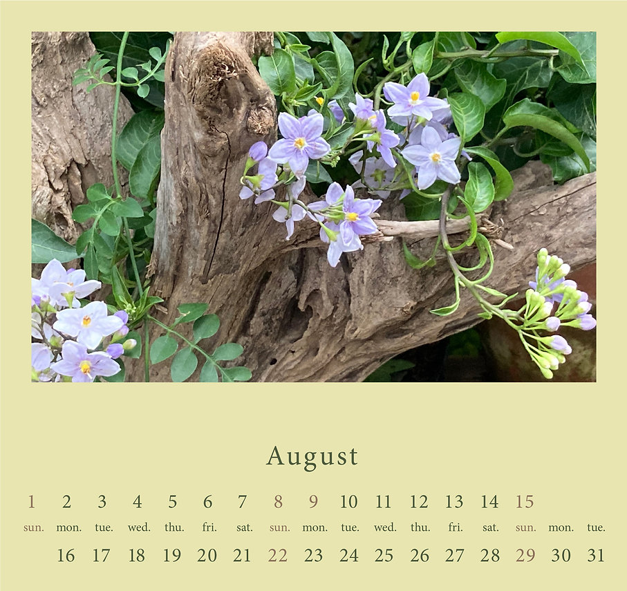 diary202108.jpg
