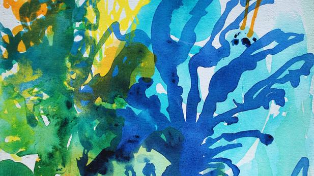 Cresson Bleu
