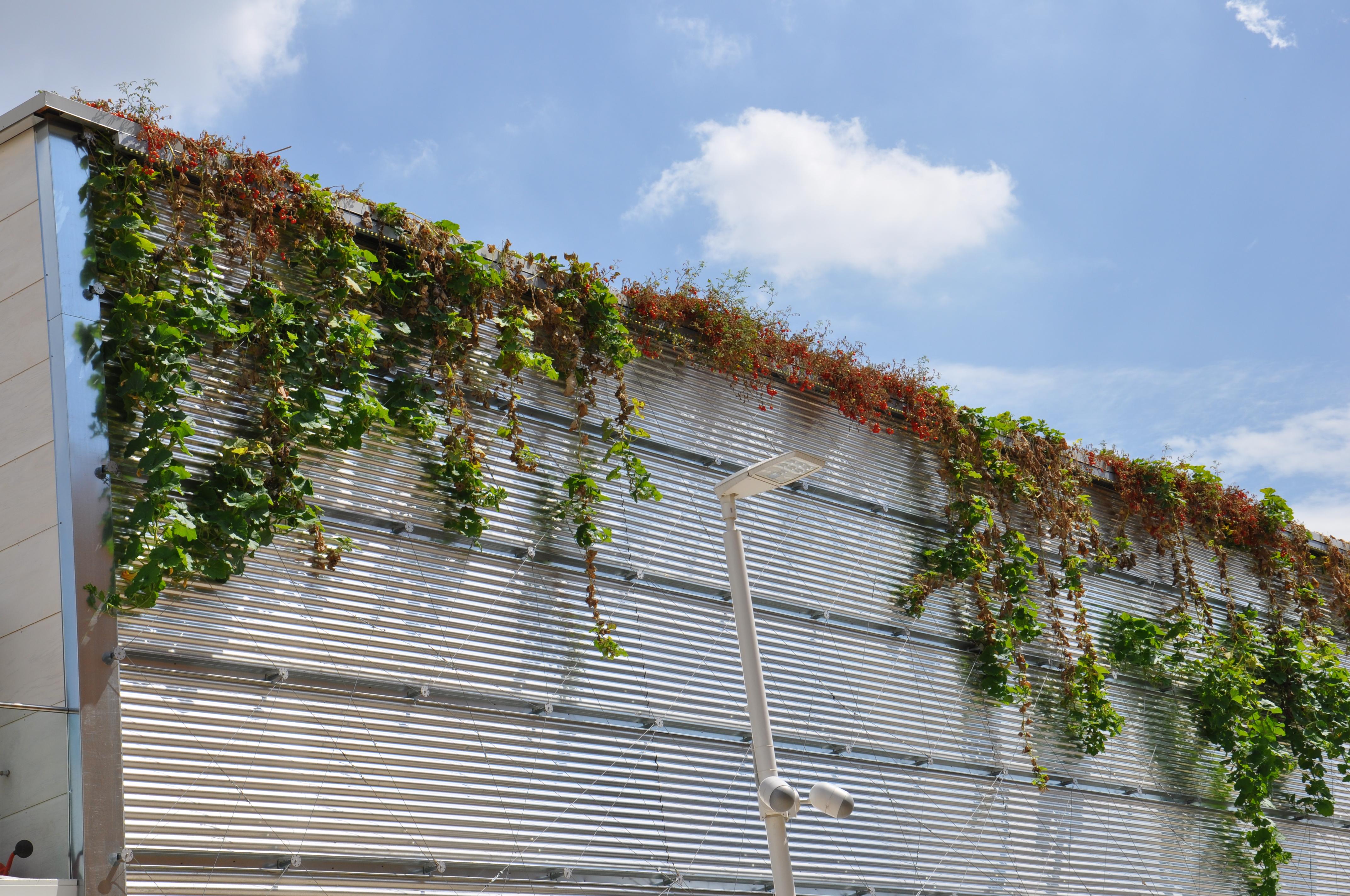 גג ביתן ישראל