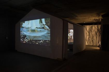 Renascent Installation, 2018