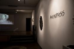 Anamorphosis, 2018