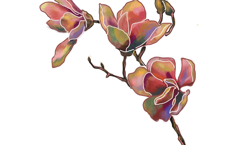 """MELANIE SCHÖNINGER, """"Magnolia"""""""