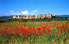 monteriggioni.jpg