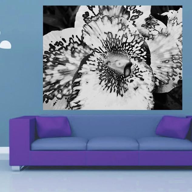 TJAŠA IRIS homage to KING BHUMIBOL ADULYADEJ, THE EYE OF FLOWER