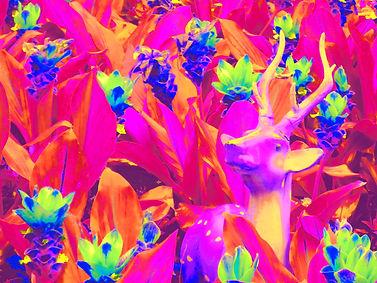 deer from wat arun red M.jpg