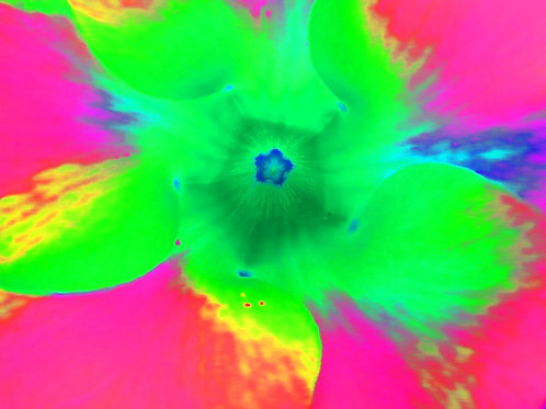 "Tjaša Iris , ""Colorful Wind 2"", photograph - mixed media, 120 x 160 cm, 2018"