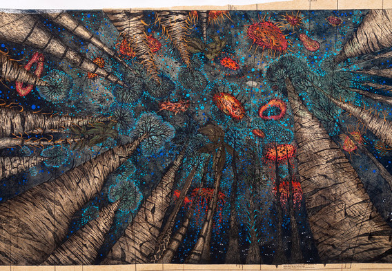 PAULA QUINTELA, The Blue Storm