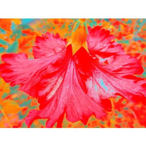 "Tjaša Iris , ""Red Hibiscus"", photograph - mixed media, 120 x 160 cm, 2018"