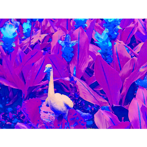 "Tjaša Iris , ""Blue Duck from Wat Arun"", photograph - mm, 120 x 160 cm, 2018"