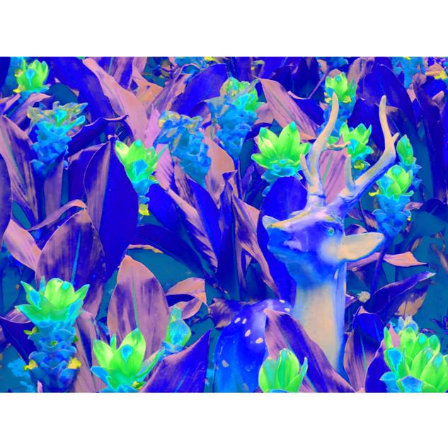 "Tjaša Iris , ""Deer at Wat Arun - Blue"""