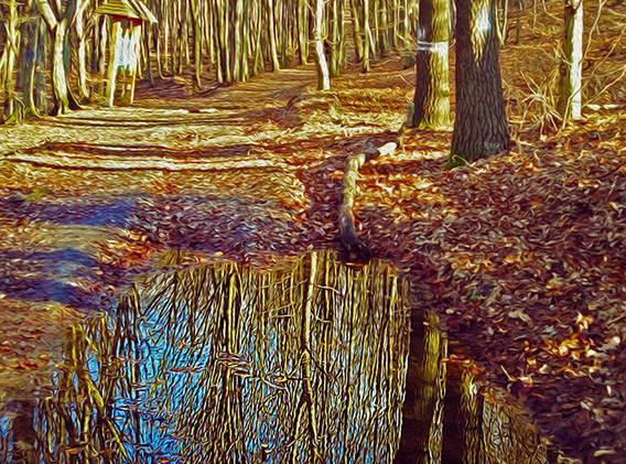 KRISTIN INBAL, Reflection
