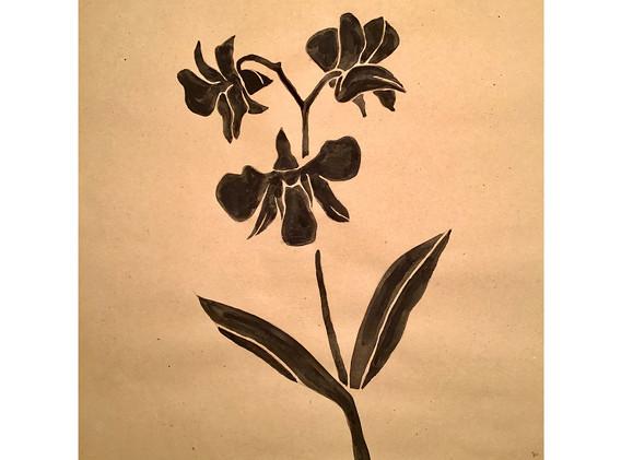 """MELANIE SCHÖNINGER, """"Orchid"""""""