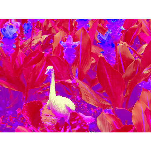 "Tjaša Iris , ""Red Duck from Wat Arun"", photograph - mm, 120 x 160 cm, 2018"