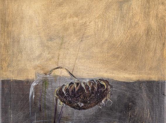 ZUZANA PETRAKOVA, In The Dark