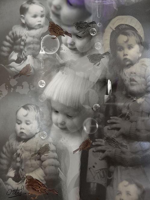 Cristina Ortiz, The Sensitive World, 100 x 75cm, print on aluminium