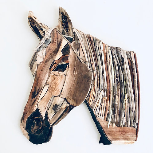 Beautiful Driftwood Racehorse