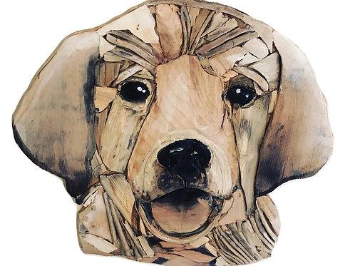 Driftwood Labrador Puppy
