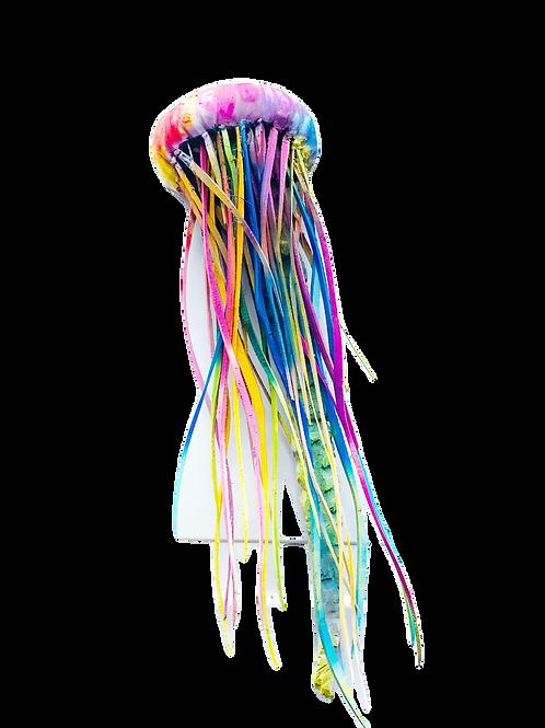 Rainbow Jellyfish In Colour