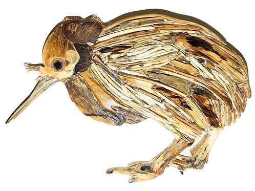 Cute Driftwood Kiwi Bird
