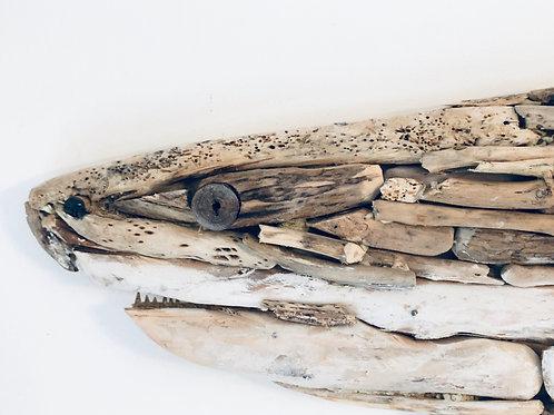 Beautiful Driftwood Shark  [800mm - 500mm]