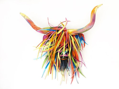 Driftwood Highland Cow/Heifer In Colour