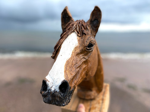 Oak Horse Bust -  Stud - Stallion Sculpture