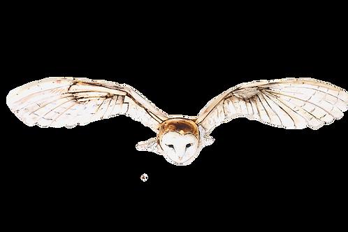 Driftwood Barn Owl