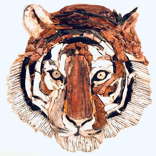 Stunning Driftwood Tiger