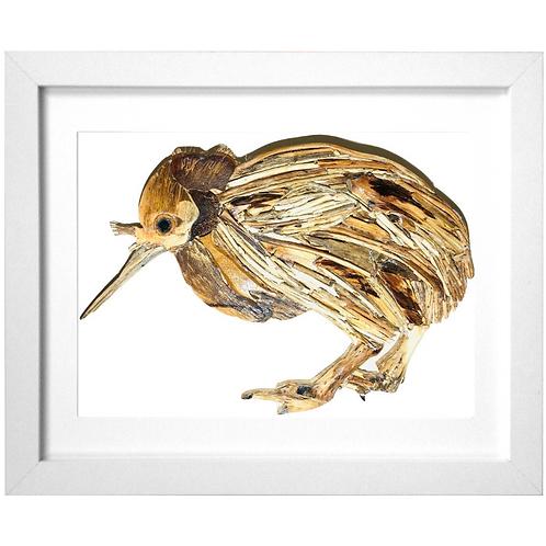 Driftwood Kiwi Print